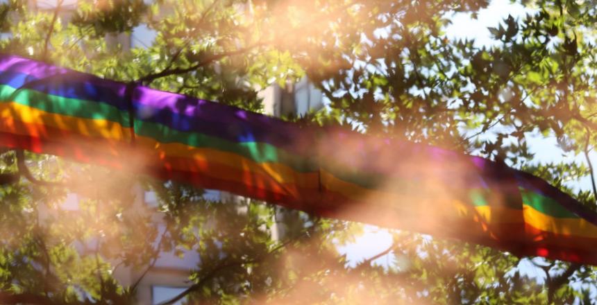 Pride Month Tree - Adoption Resize